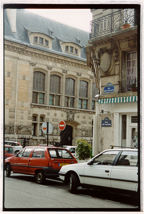 Street in Paris, 2003 // Photo: Cheryl Spelts