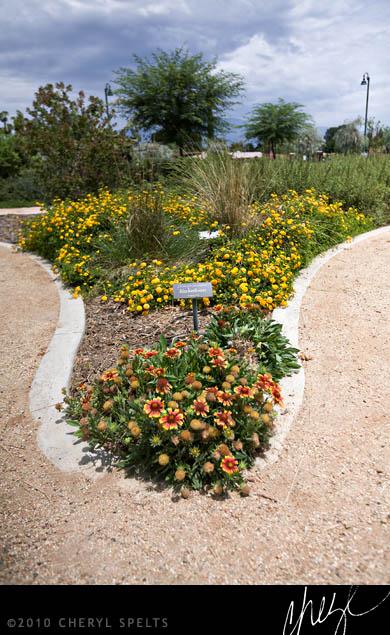 Garden at the Estudillo Mansion