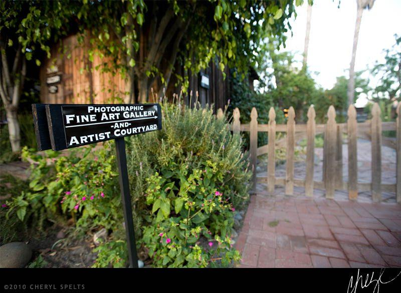 Artist Courtyard // Photo: Cheryl Spelts