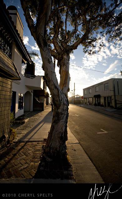 Downtown Newport // Photo: Cheryl Spelts