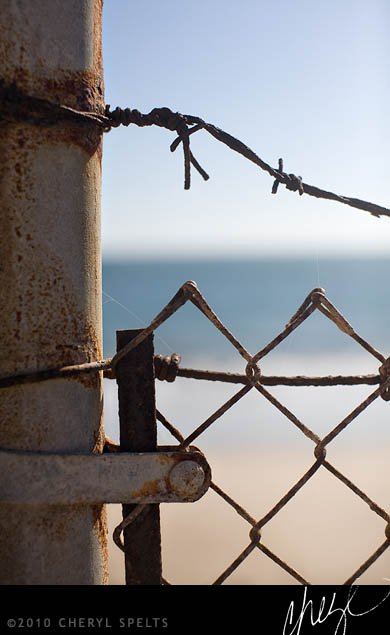 Barbed Wire and the Beach // Photo: Cheryl Spelts