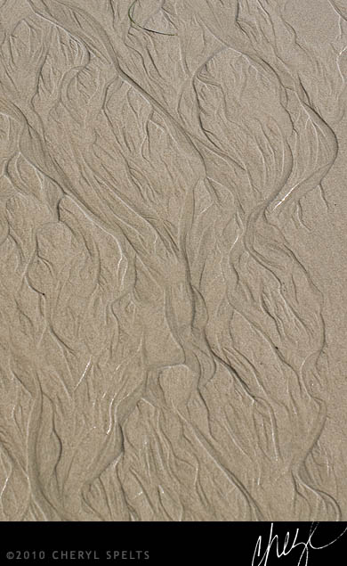 Patterns in the Sand // Photo: Cheryl Spelts