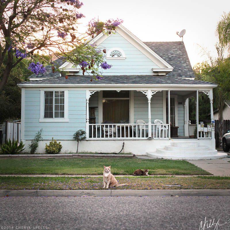 My House on Cedar Street // Photo: Cheryl Spelts