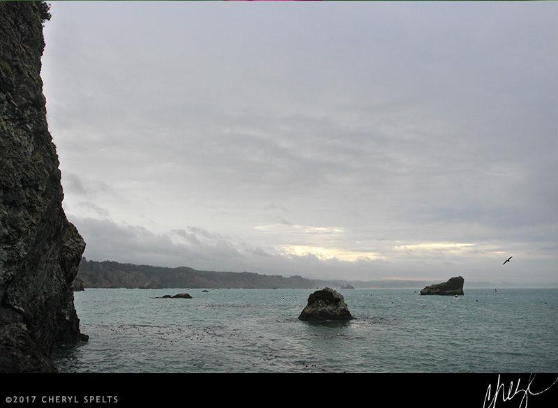 Trinidad Bay // Photo: Cheryl Spelts